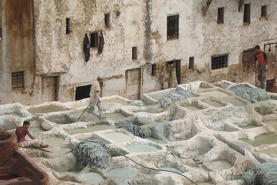 Tannery in Fez medina.  Hides are soaked in lime and pigeon poop to soften them for scrapping off the hair.