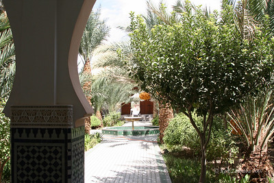 Mosque gardens - unusually green in a draught