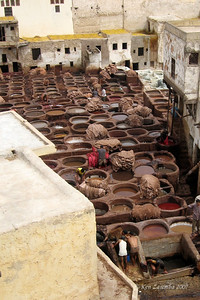 The dye pot  field at the tannery.  Lime pots are in the background