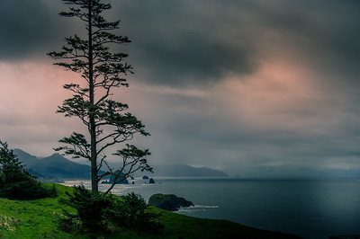 Views along the Oregon coastline.