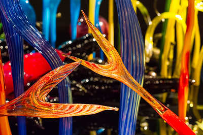 Wonder through a spectacular wonderland of wildly complex and colorful glass sculptures at Chihuly Garden and Glass, located adjacent to the Space Needle at Seattle Center.