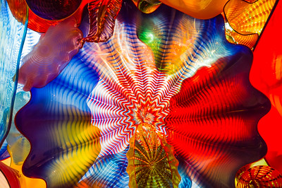 Chihuly Garden and Glass Photo