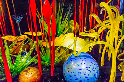 Chihuly Garden and Glass Photos