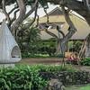 Taking a stroll on Maui's Wailea Coastal Walk