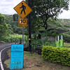 Rest stop along the road to Hana