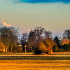 Farm land with Mount Baker in Background. #nikon_dslr_users @nature.geography