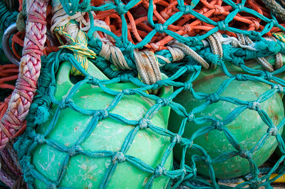 Fish net and floats