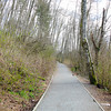 A trail in the marshy woodlands of Campbell Valley Regional Park, Metro Vancouver