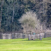 Historic farm in Metro Vancouver's Campbell Valley Regional Park