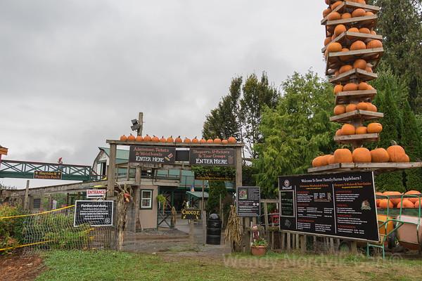 Taves Family Farm