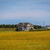 Scenic drives touring beautiful PEI countryside