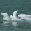 Small icebergs calved from Mendenhall Glacier near Juneau. Top things to do Crusing to Alaska Ports of Call Shore Excursions