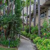 Tropical Polynesian gardens San Diego California