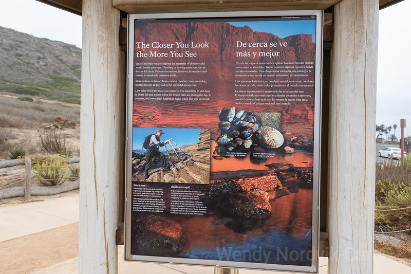Information signage near the rugged sandstone cliffs of San Diego's Cabrillo National Monument
