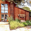 Sequoia Grove Winery Tour in Napa Valley, California