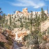 Explore scenic Mossy Cave hiking trail in Bryce Canyon Utah