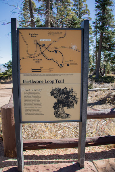 Rainbow and Yovimpa viewpoints - Top things to do in Bryce Canyon National Park