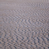 Ripples in the sand - Top things to do in Olympic National Park