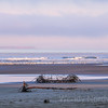 Kalaloch Beach - Top things to do in Olympic National Park