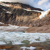 Path of the Glacier Trail<br /> The two paths that lead here both end at the meltwater lake.