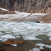 Path of the Glacier Trail<br /> Icebergs calve into the meltwater lake and add a nice contrast to the scenery.