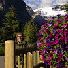 The grounds of Chateau Lake Louise are adorned with hanging baskets full of colorful flowers.  Here's one on the shoreline trail on our way to the Lake Agnes trailhead.