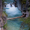 A closer look at one of the many cascades tumbling through Johnston Canyon.