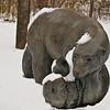 Polar Bear & Cub - 1982<br /> Leo Mol Sculpture Garden