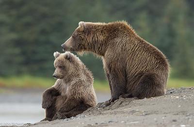 Pavlov and her cub