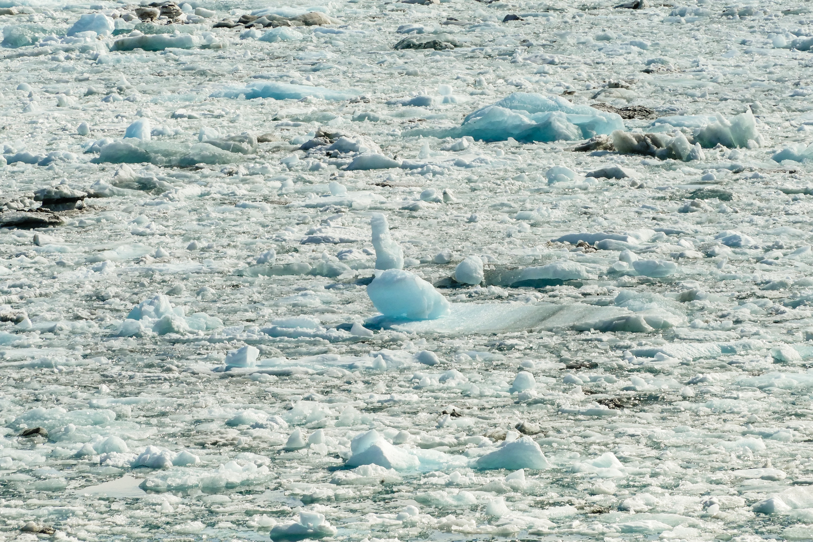 Ice clogs the way to Hubbard Glacier, Alaska.