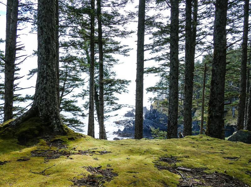 kodiak-island-hike-15