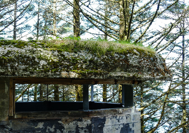 Moss covers a concrete WWII lookout structure at Fort Abercrombie State Historical Park.