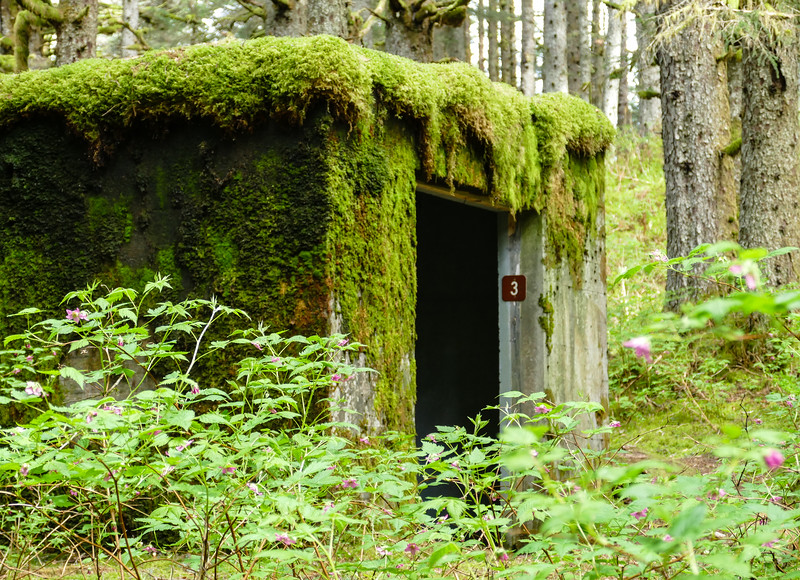 Moss tumbles over the roof of a barracks on Kodiak Island.
