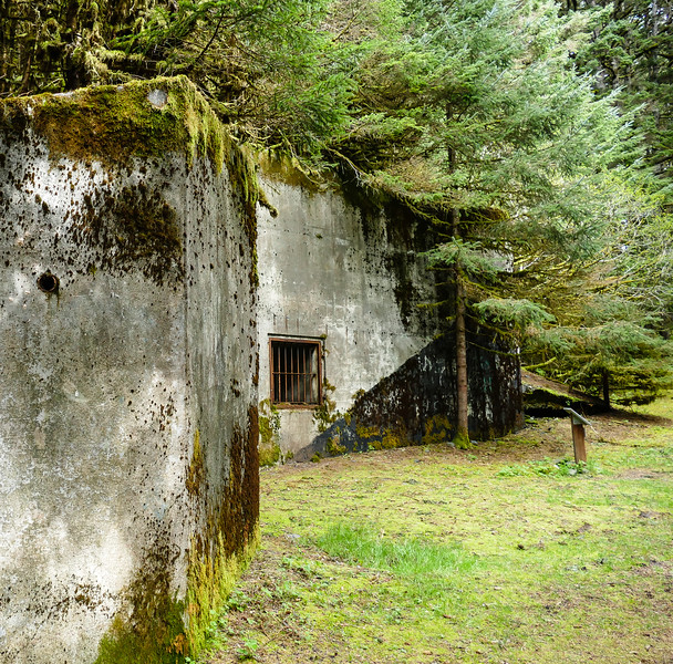 The forest reclaims a WWII building at Fort Abercrombie State Historical Park.