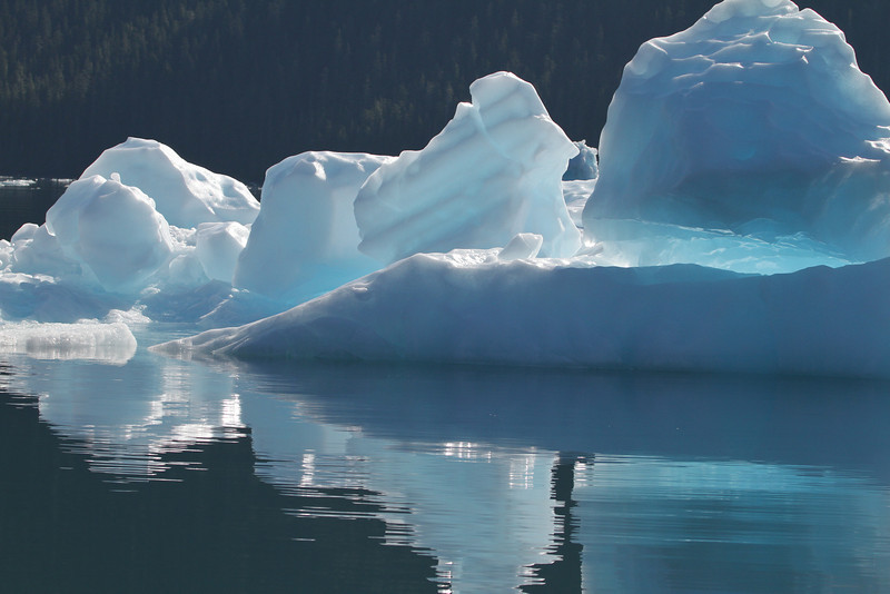 Blue iceberg reflecting in LeConte Bay, Southeast Alaska