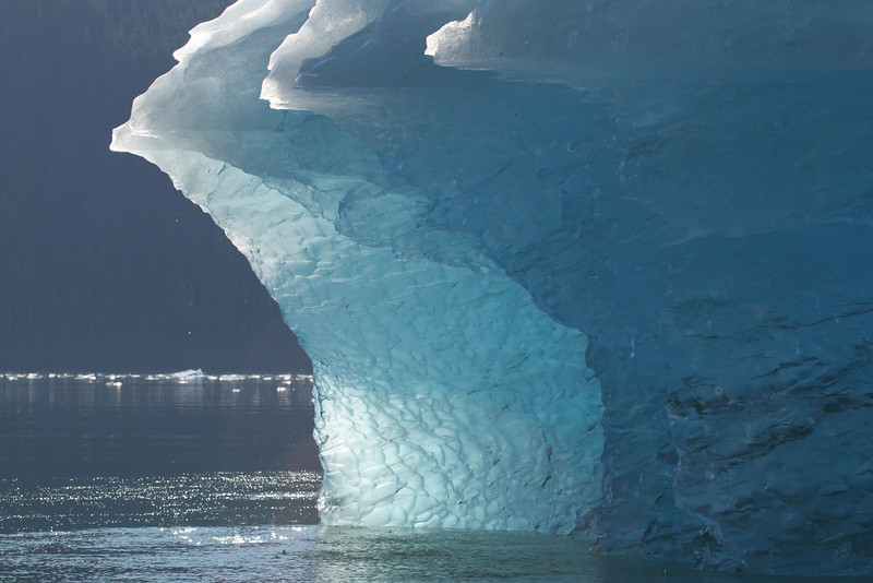 Water drips from this iceberg in LeConte Bay, Alaska