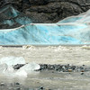 Davidson Glacier close up