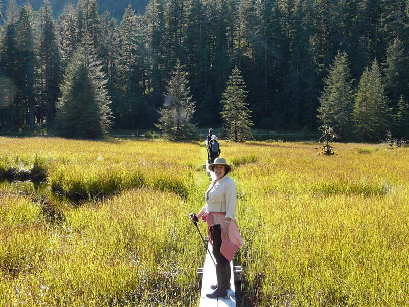 Woman hiker standing on a boardwalk that crosses the trail in Alaska.
