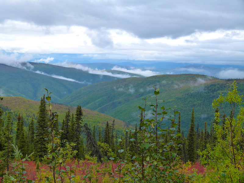 Mist rising on the Top of the World Highway in Yukon Territory, Canada