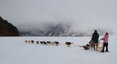 Dog sled at Godwin Glacier, Seward