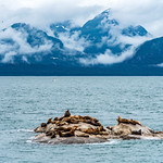 Travel to Alaska