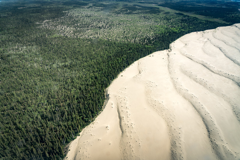 The Kobuk Sand Dunes in Kobuk Valley National Park