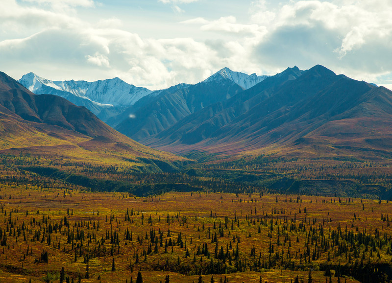Fall colors on the Glenn Highway in Alaska