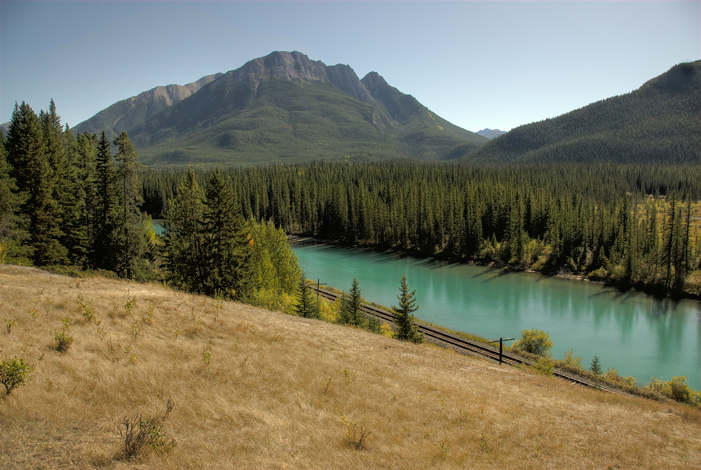Tree Lined River in the Canadian Rockies - Alberta, Canada