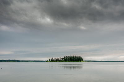 Elk Island National Park in Alberta, Canada