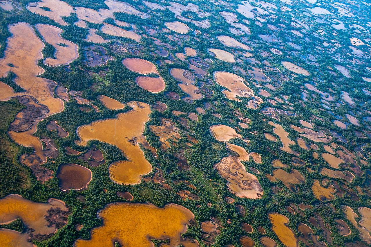 Aerial shot of Wood Buffalo National Park, Canada