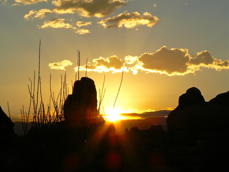 Sunrise Arches National Park