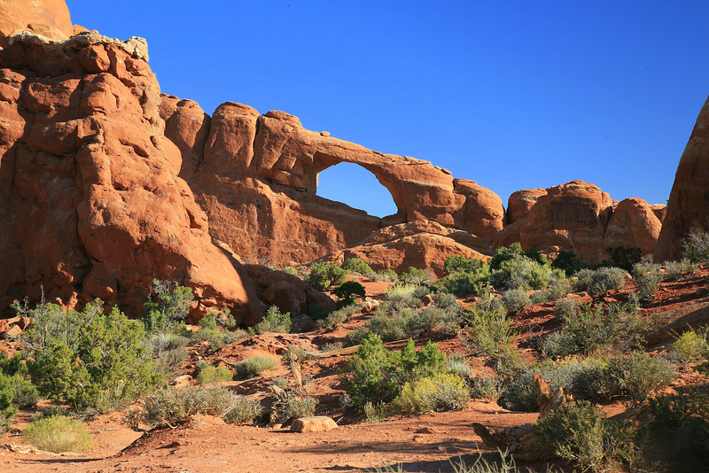 backside skyline arch
