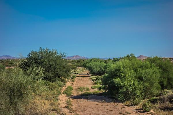 Arizona #2