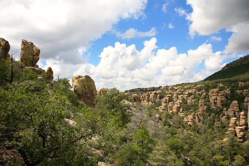 stone-forest-chiricahuas